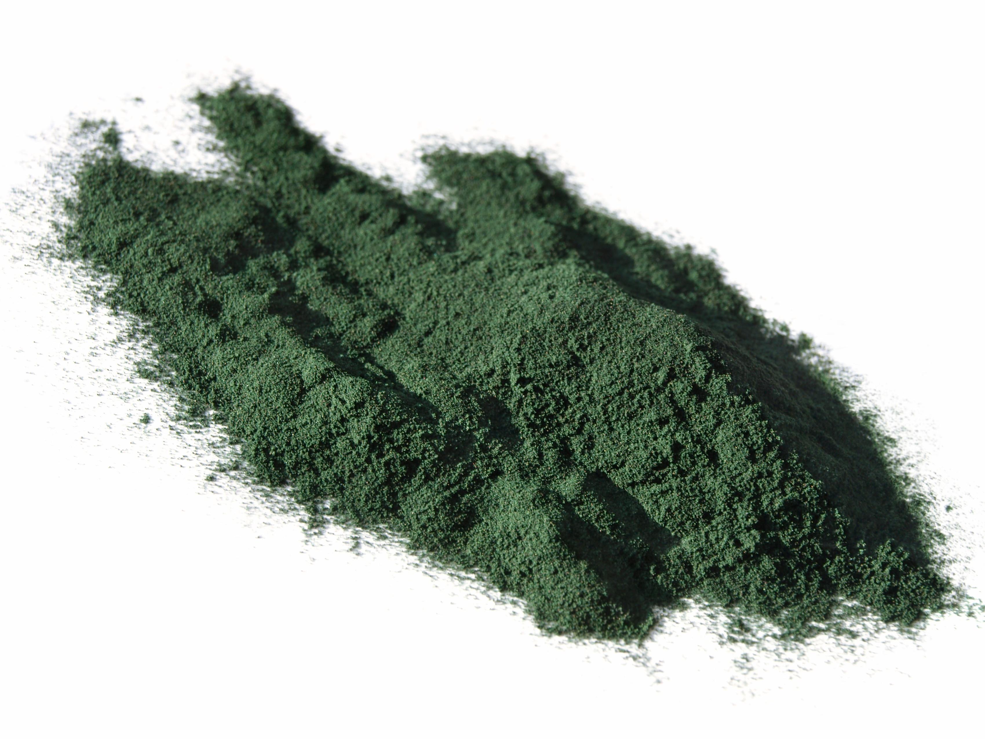 Algae_Powder