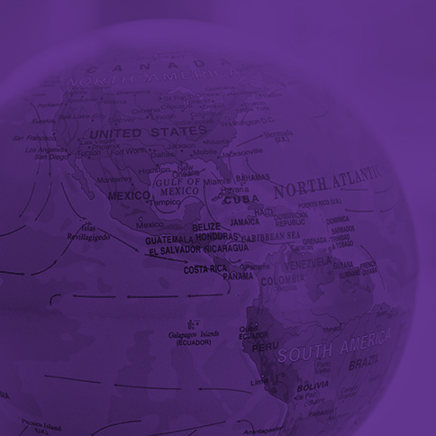 Globe-purple-sq