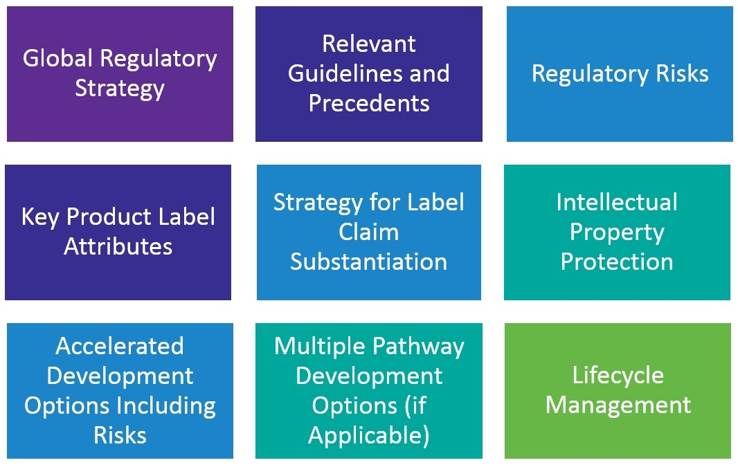 Regulatory-Strategy-1