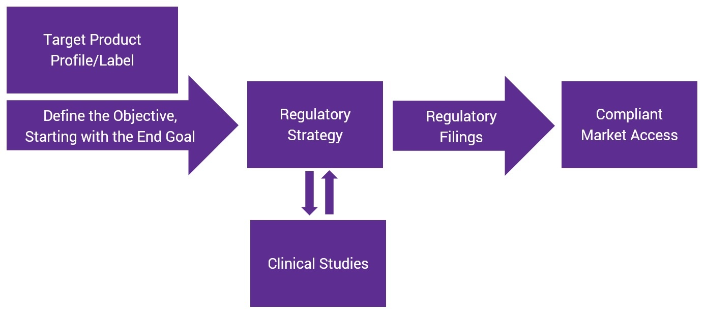Regulatory-Strategy-2