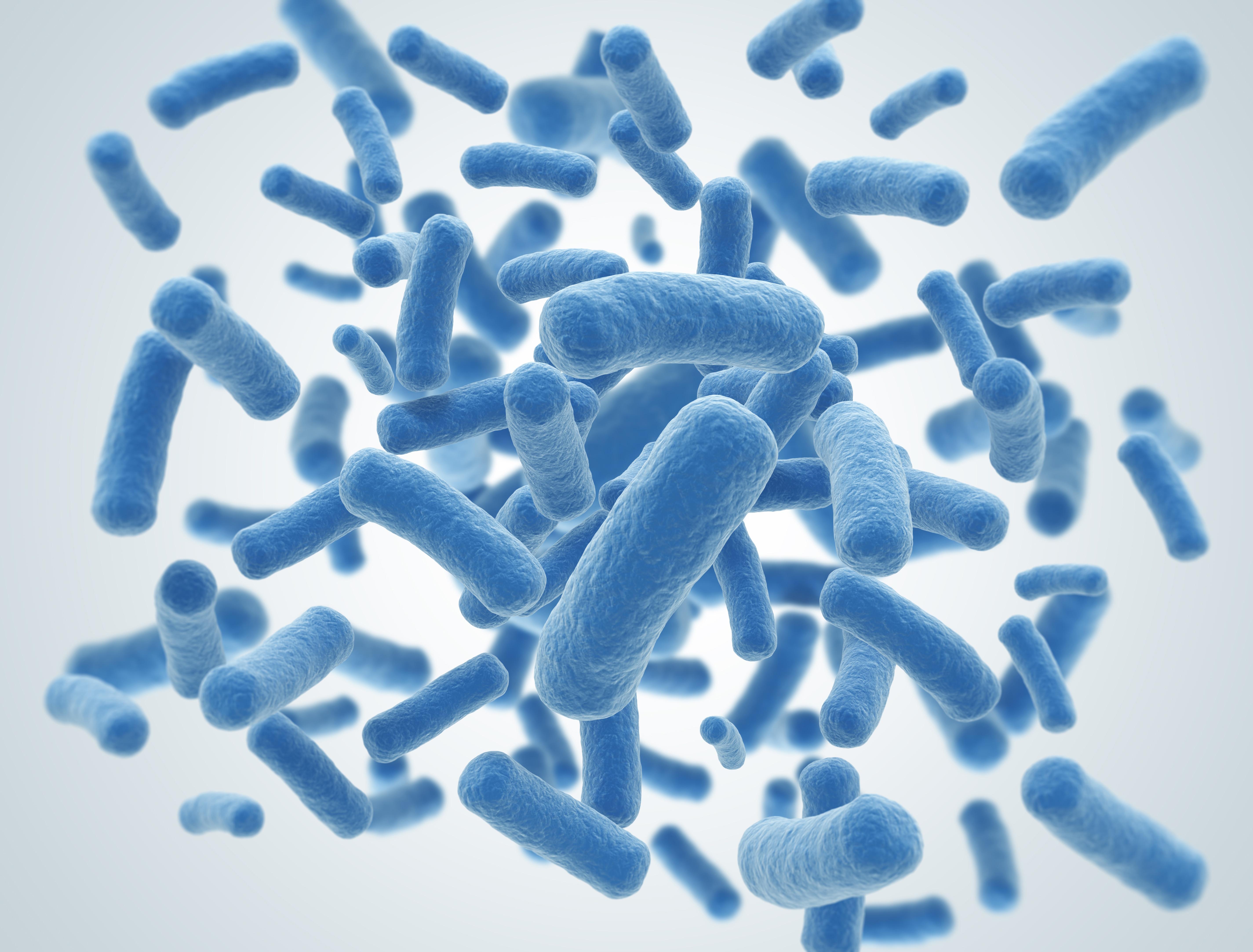 Probiotic_bacteria_2.jpg
